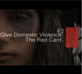 Cumbria Police Domestic Violence